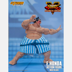storm-e_honda_-_sfv_champion_edition_by_storm-05