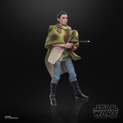 sw-bs-leia-endor-02
